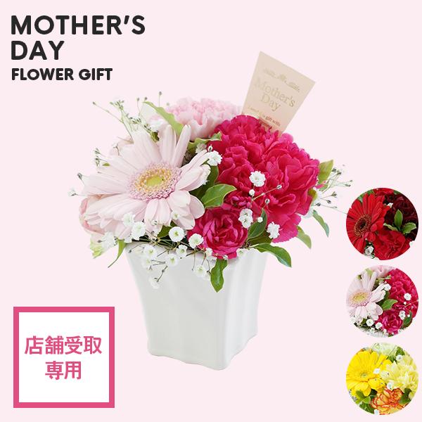【母の日】アレンジメント S カーネーション&ガーベラ  陶器ポット|店舗受取専用